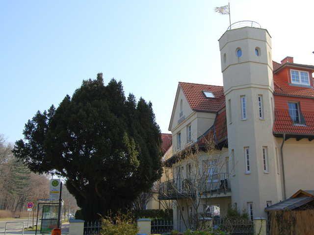 Ferienwohnung Warnemünde an der Ostsee (LB) - Ferienwohnung 5