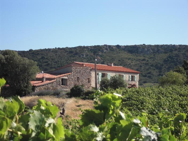 Vineyard farmhouse renovated to luxury standard