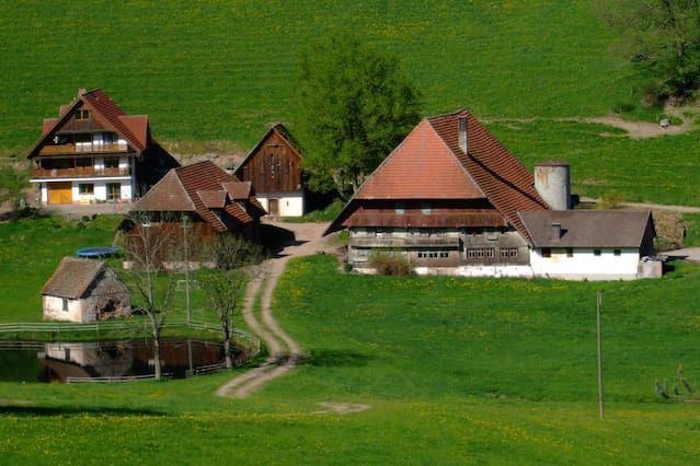 Lovely 1 Bedroom Apartment in Black Forest with Parking