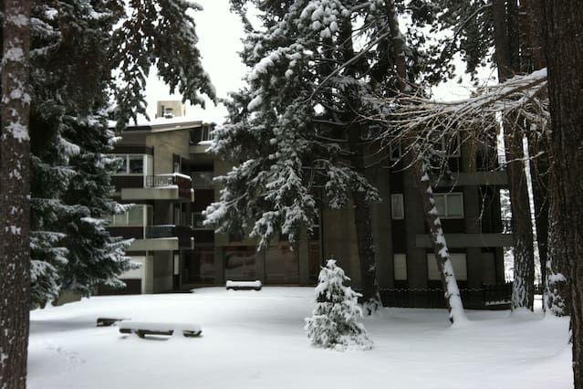 Apartamento con jardín