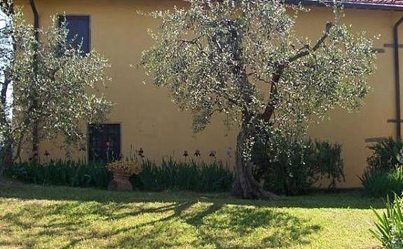 Alojamiento de 10 habitaciones en Romola