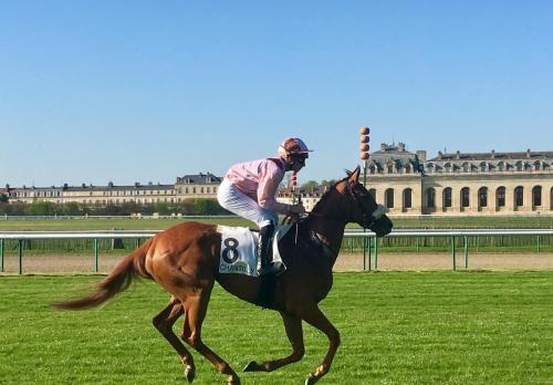 Logement merveilleux à Chantilly