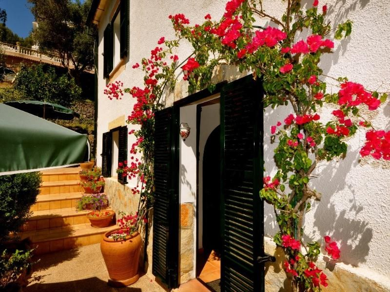 Pet friendly apartment in Sóller