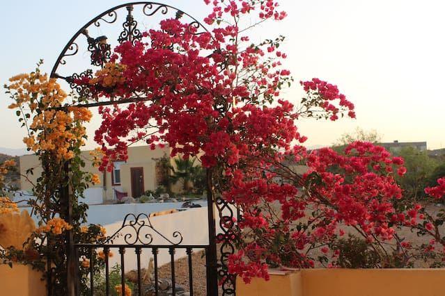 Casa Buena Vista Casita